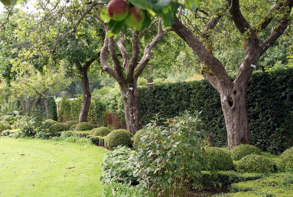 Wenn der garten fr chte tr gt zuber aussenwelten for Gartengestaltung rosenbogen